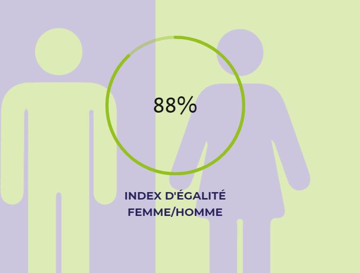 INDEX 2020 DE L'ÉGALITÉ FEMME/HOMME