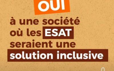 Les ESAT, le droit au travail pour tous – GEPSo